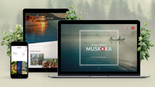tourism website design and development