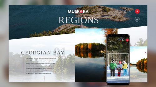 tourism website design